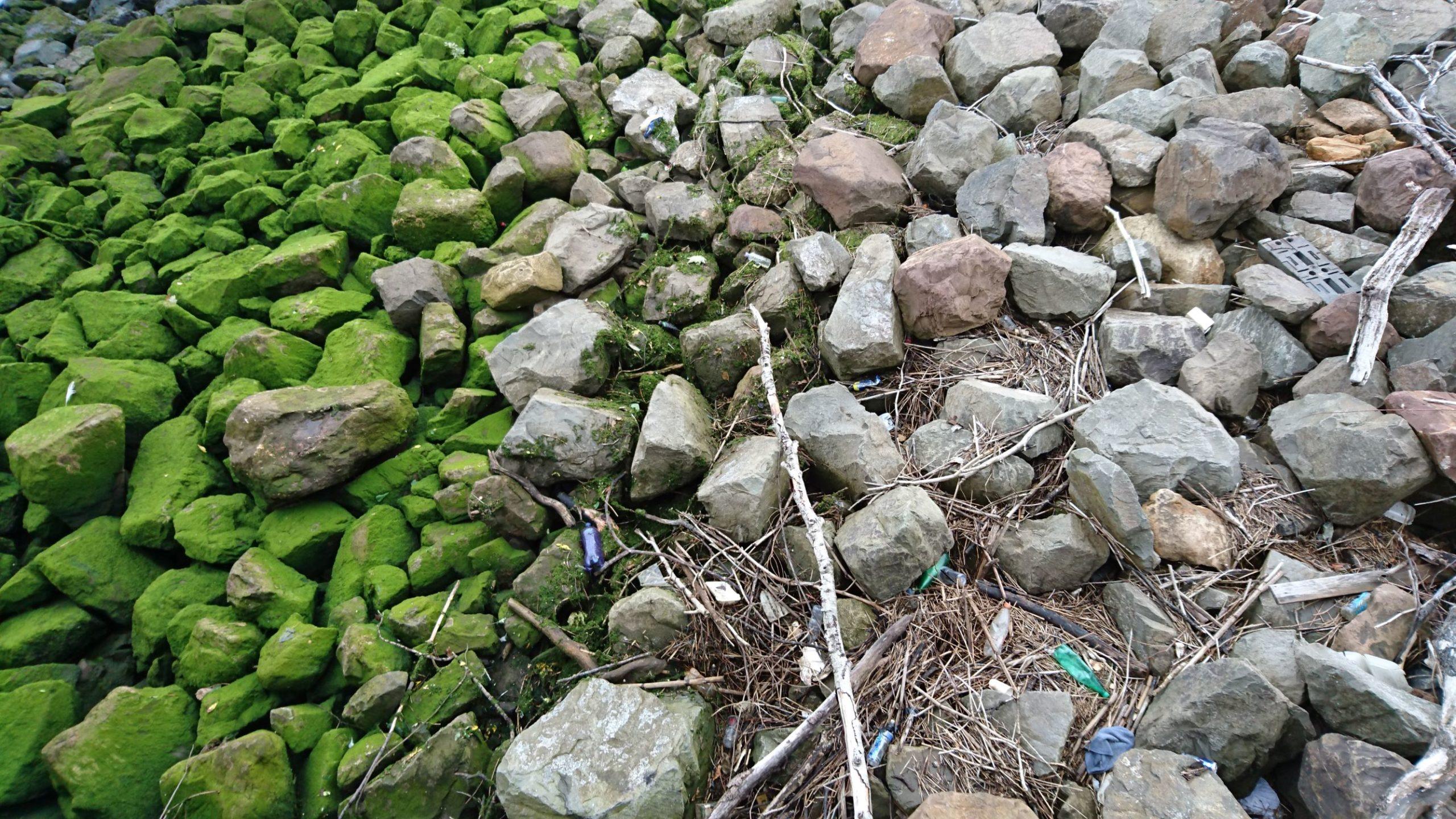 Image of beautiful rocks and detritus