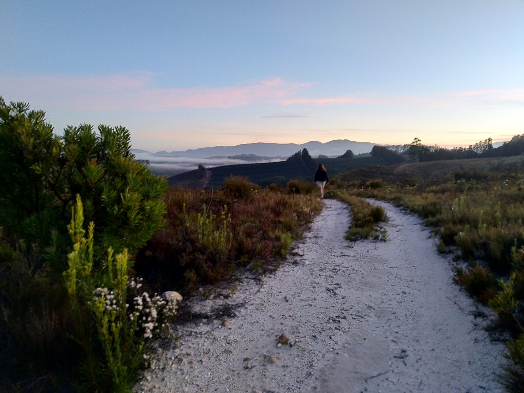 Dawn breaking over Palmiet River Valley on our morning walk